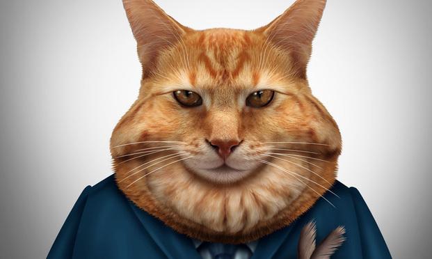 Business-Fat-Cat-Art